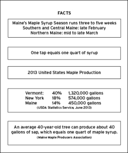 maple facts